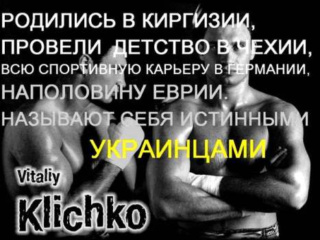 berkut_net_15